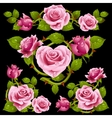 pink Rose design elements vector image vector image