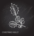 hand drawn holly vector image
