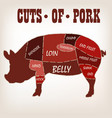 cut of meat set poster butcher diagram vector image