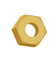 gold nut isolated golden female screw on white vector image