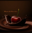 cherry falling in the chocolate vector image