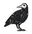 Crow tattoo vector image