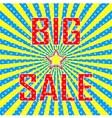 BIG SALE poster vector image