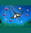stingray and many fish under the ocean vector image