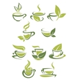 Collection of green or organic tea icons vector image vector image