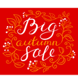Big autumn sale hand drawn calligraphic lettering vector image