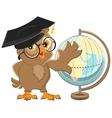Owl teacher turns Globe vector image