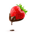 strawberry with chocolate drop on white vector image