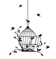 birds with birdcage vector image vector image