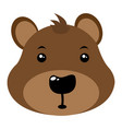 avatar of bear vector image