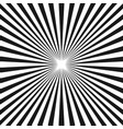 black white sunburst background stripe lines vector image