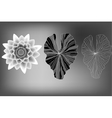 Lotus flower and leaves elements black and white vector image