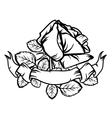 Rose and Old Banner vector image
