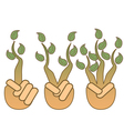 green leaf growing from hands vector image