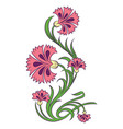 carnations drawing vector image vector image