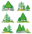 Landscapes with coniferous trees grass and stones vector image