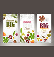 fresh minimalist fall vertical banners with leafs vector image vector image