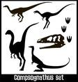 compsognathus set vector image
