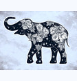 elephant with wild rose flowers star ornaments vector image