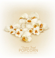 isolated popcorn vector image