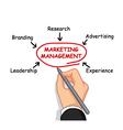 business man writing marketing management vector image