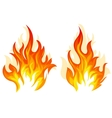 Two fire vector image