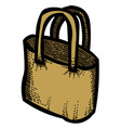 cartoon image of shopping bag vector image
