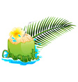 Fresh coconut juice on white background vector image