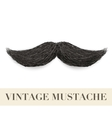 Realistic Black vintage curly mustache vector image
