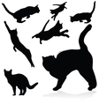 cat black silhouettes vector image