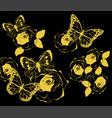 butterflies vintage vector image