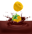 Yellow raspberries with chocolate vector image