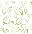 fresh green leafs vector image