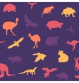 Australian animals pattern vector image