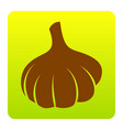 garlic simple sign brown icon at green vector image