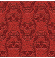 skulls on leather vector image