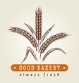 good bakery logo with wheat ears vector image
