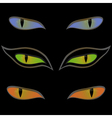 Three pairs of cat eyes over black vector image