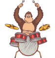 monkey and drums vector image