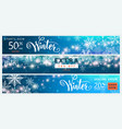 winter banner set color sale background design vector image