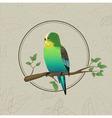 Parrot sketch Decorative bird vector image