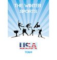The winter sports USA team vector image