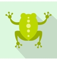 Green frog icon flat style vector image