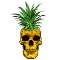hand drawn skull fruit pineapple vector image