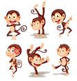 Monkey series vector image