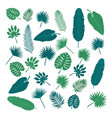 collection of tropical leaves nature elements for vector image