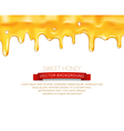 drips honey isolated on white background vector image