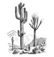 Saguaro vintage engraving vector image