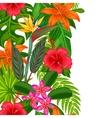 Seamless vertical border with tropical plants vector image