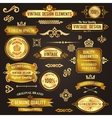 Vintage design elements golden vector image